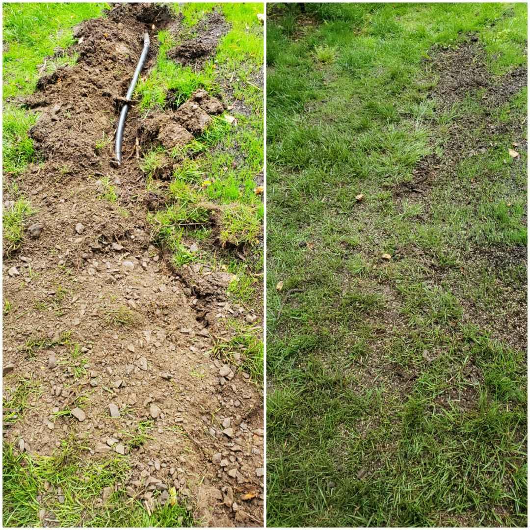 Repair sprinkler line after tree stump removal