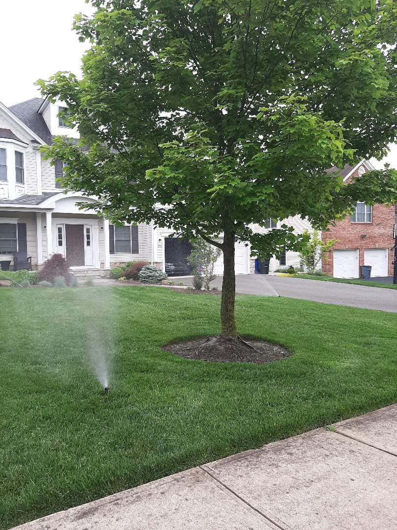 Spring start-up, irrigation sprinkler turn on. In Livingston NJ