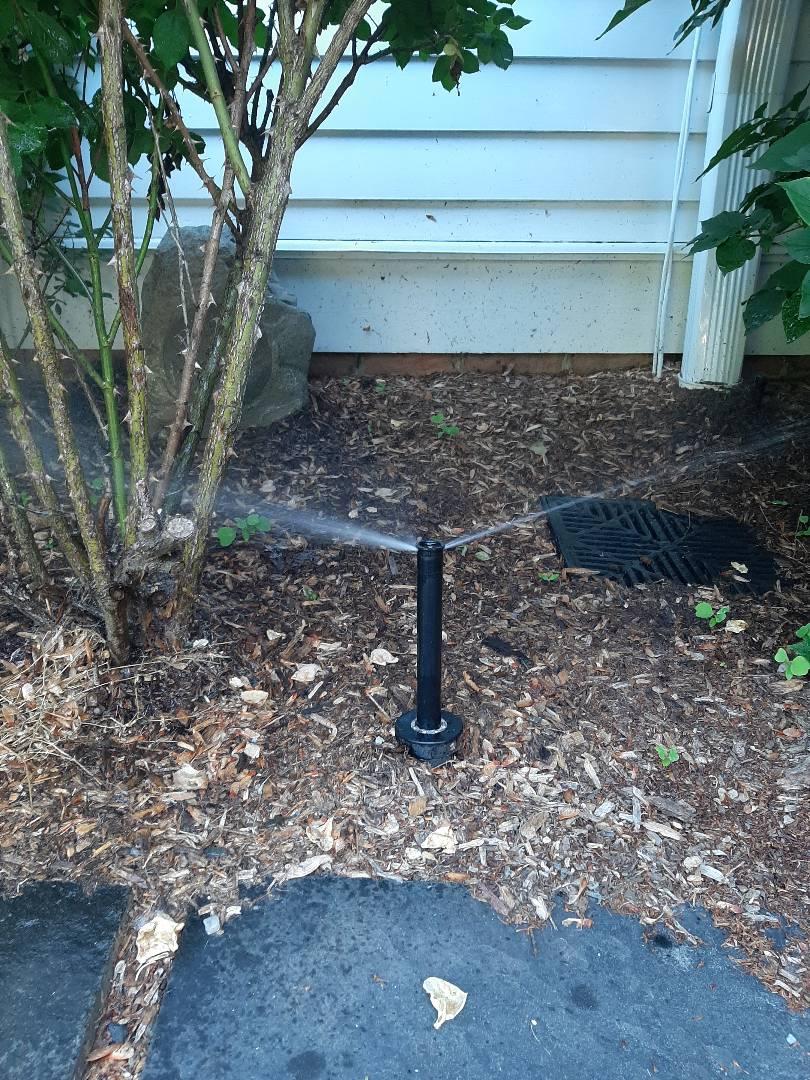 Spring start-up, irrigation sprinkler turn on. In Mendham NJ