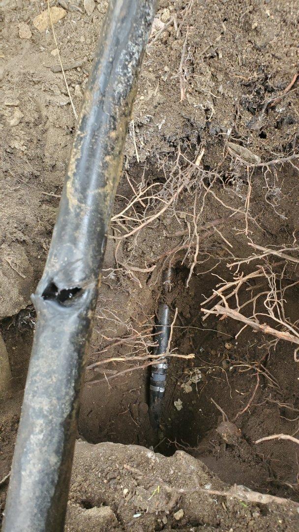 Repair sprinkler pipe
