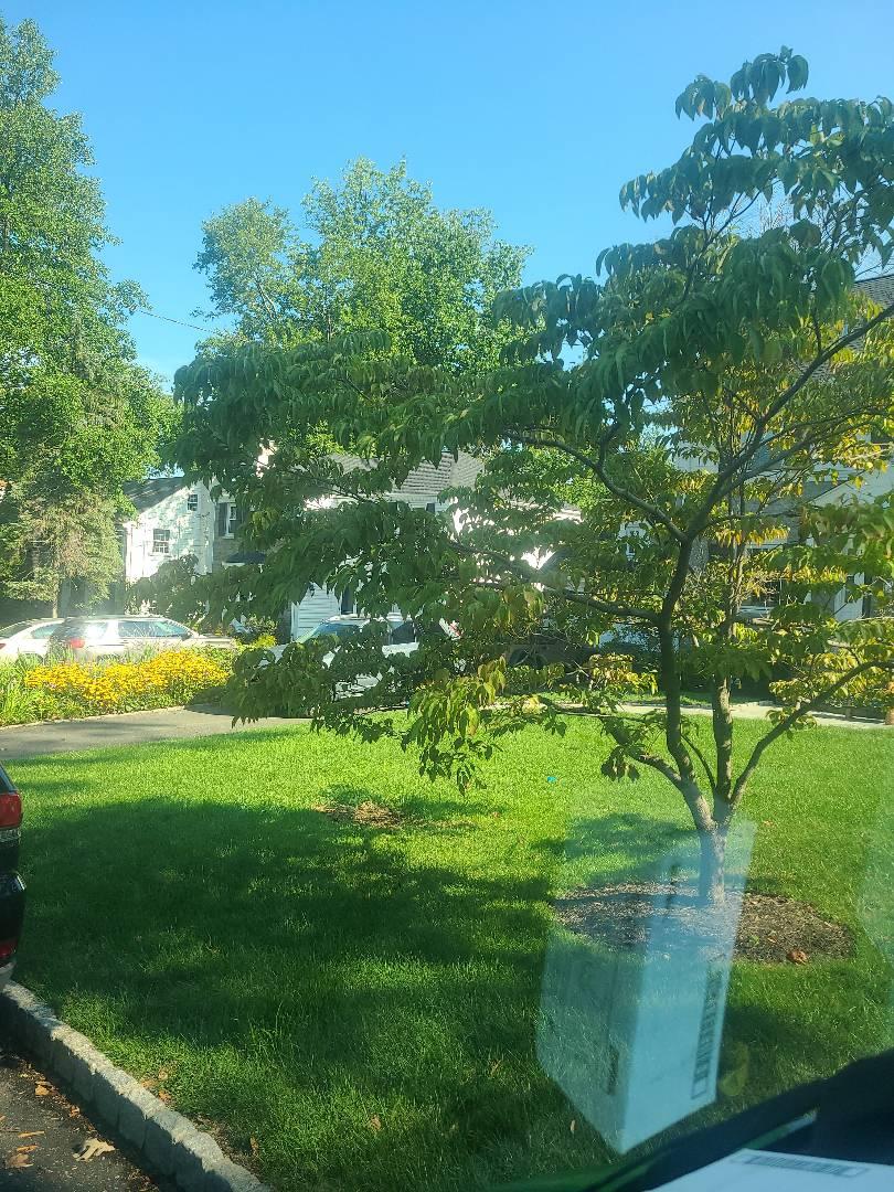 Verona, NJ - Mid Season check up. Seasonal adjustments. Sprinkler irrigation start up turn on