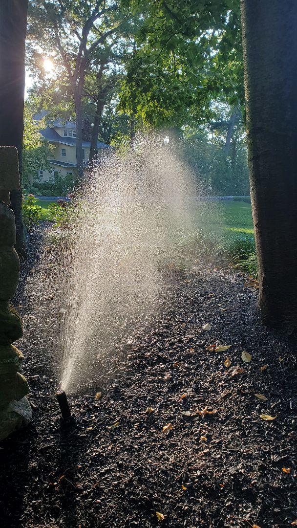 Perform mid season check on irrigation system