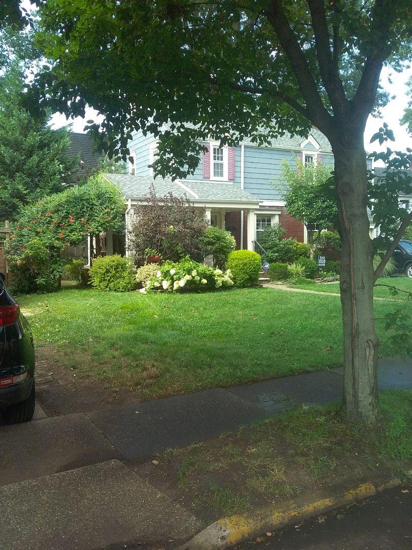 Nutley, NJ - Irrigation mid-season