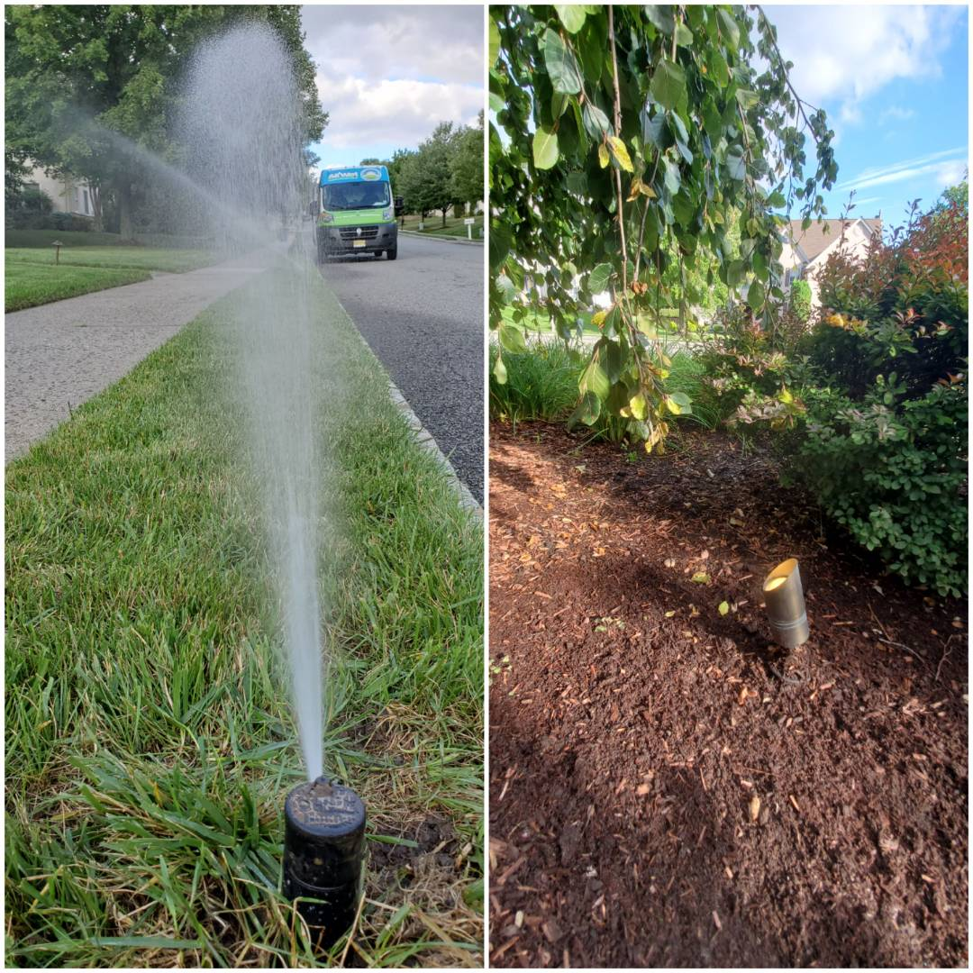 Check low voltage lighting and irrigation sysyem. Do full inspection and replace bulbs and sprinkler heads where necessary.