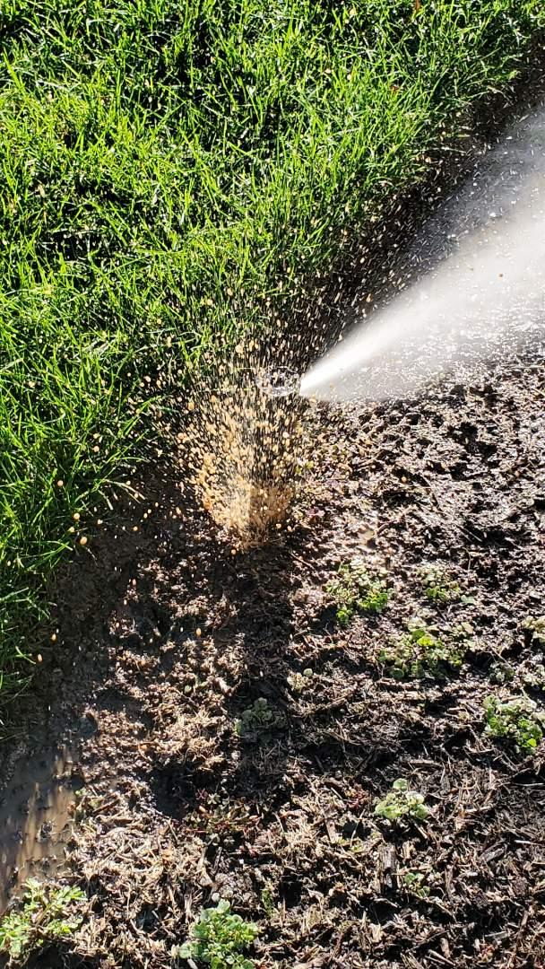 Repair broken sprinkler head then winterize the system