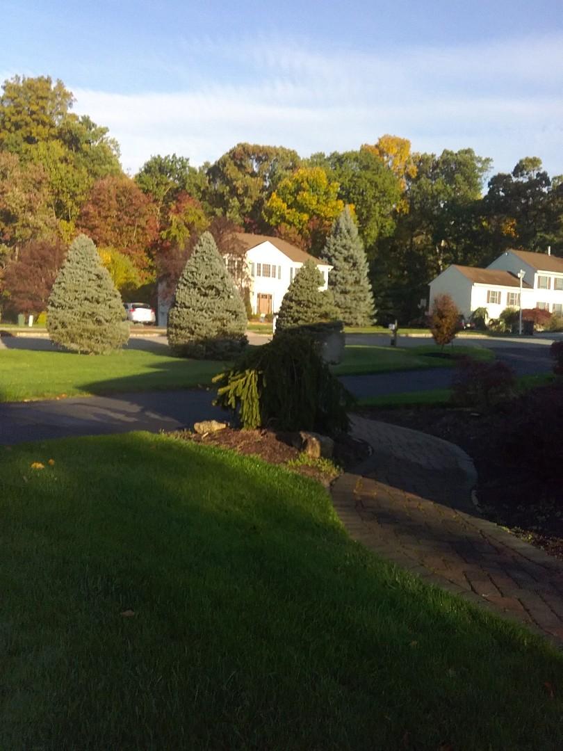 Rockaway, NJ - Irrigation winterization