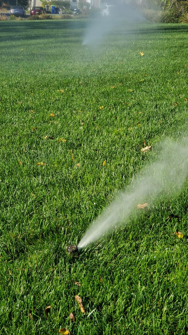 Get water out of sprinkler lines for the winter