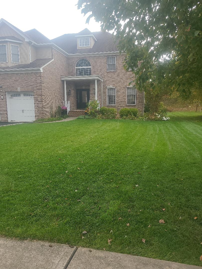 Areation and overseeding. Fall season treatments and applications. Lyme and fertilizer. Removal of fungus and weeds