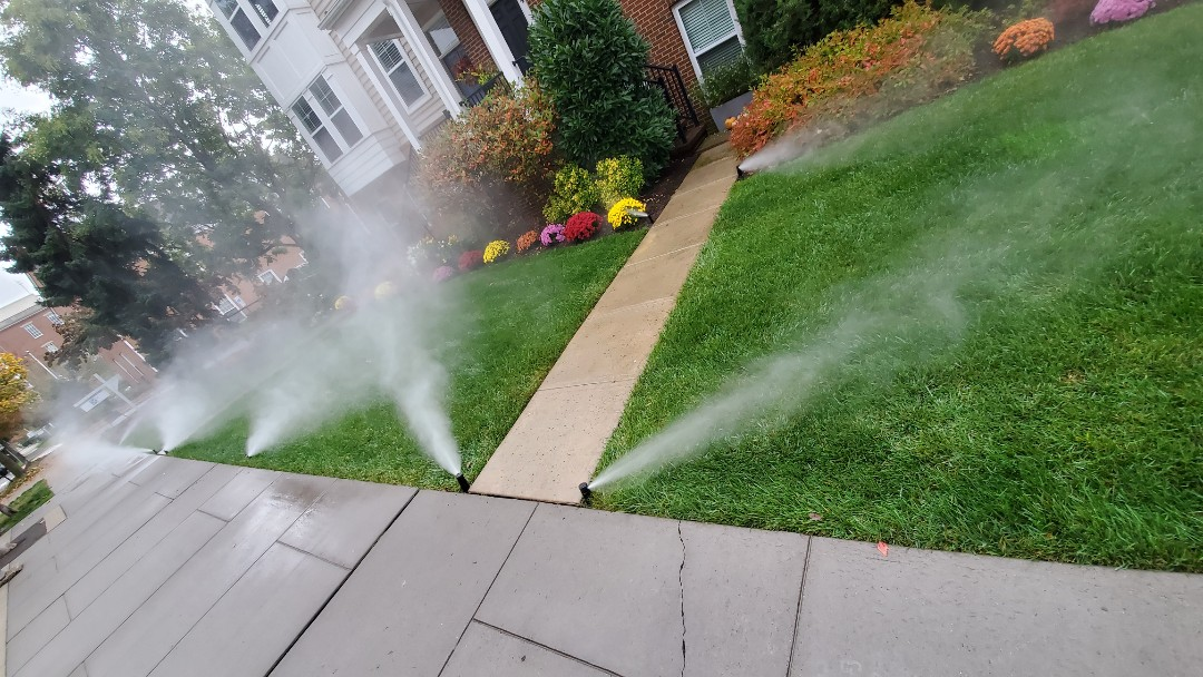 Blow out sprinkler lines