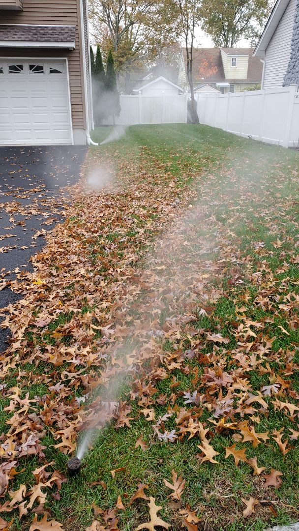 Blow out irrigation system