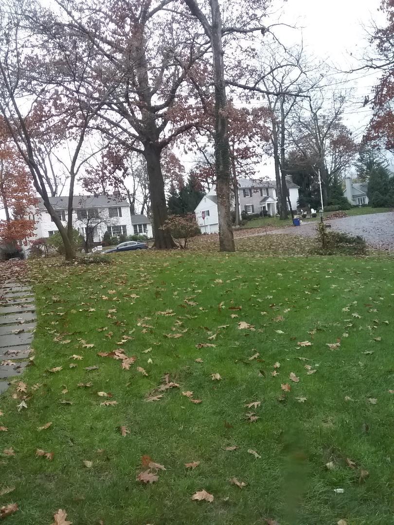 Hanover, NJ - lawn care