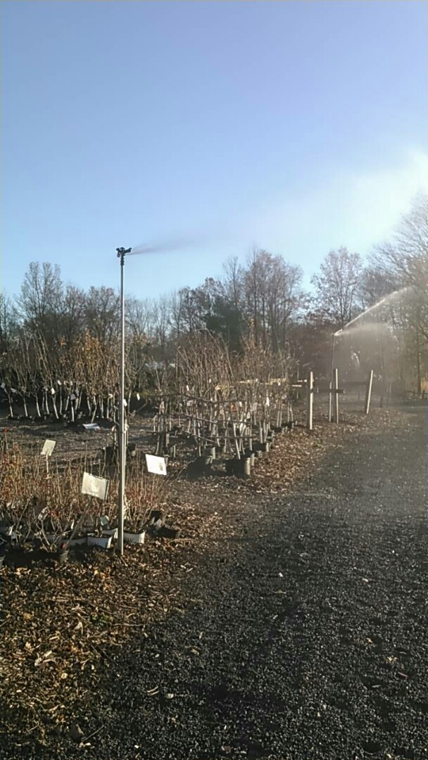 Gillette, NJ - Winterizing sprinklers at a nursery with attached hose faucets and filters