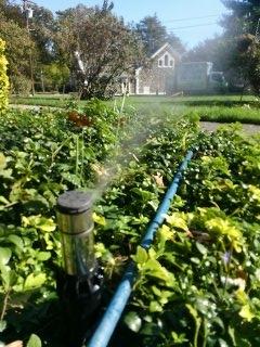 Mountain Lakes, NJ - Winterize sprinkler system