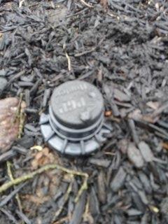 Harding Township, NJ - Replaced sprinkler head