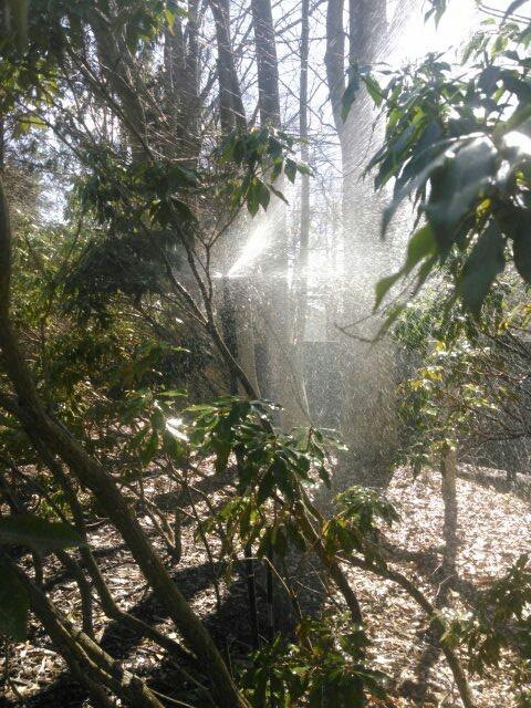Harding Township, NJ - Irrigation system start up