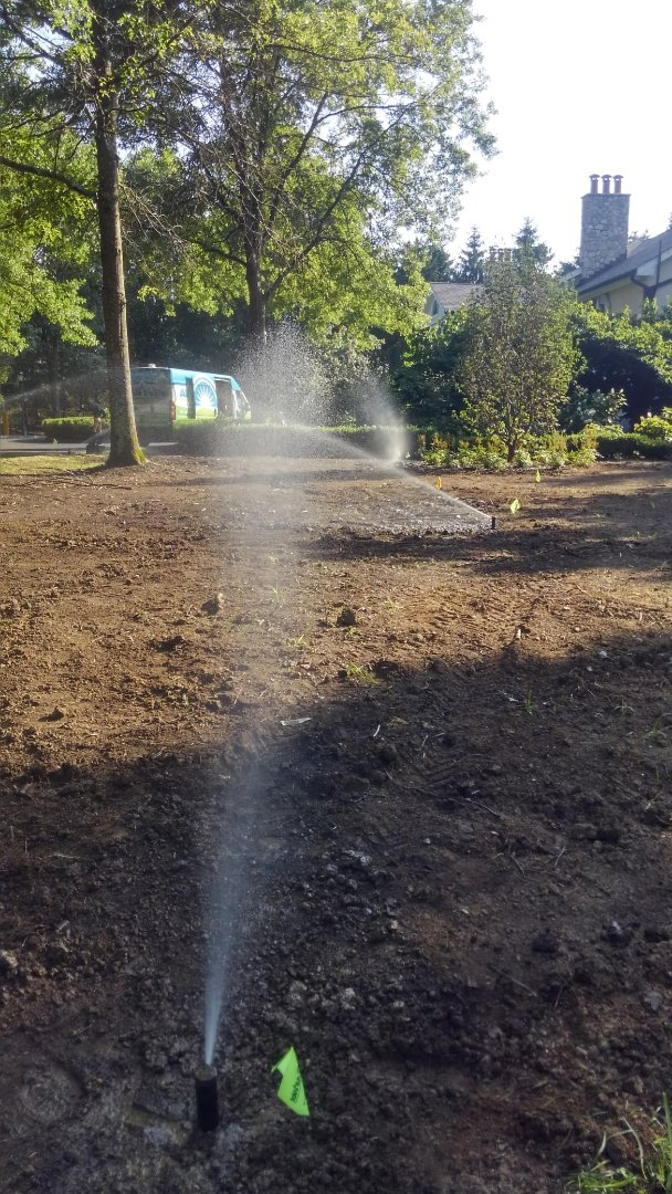 Wharton, NJ - Install new lawn Zone