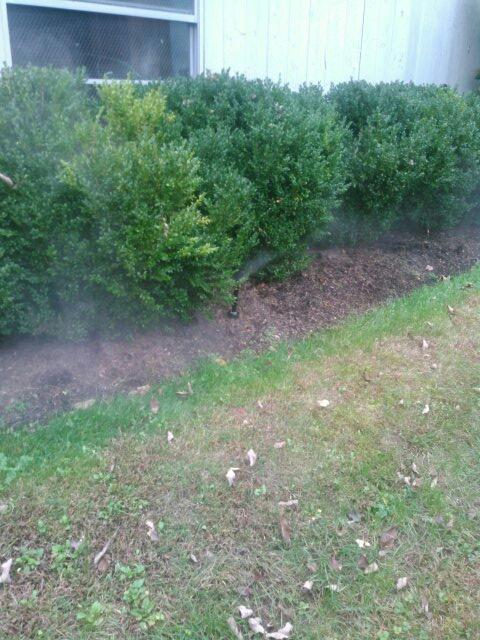 Bernardsville, NJ - Winterizing sprinkler systems and doin repairs