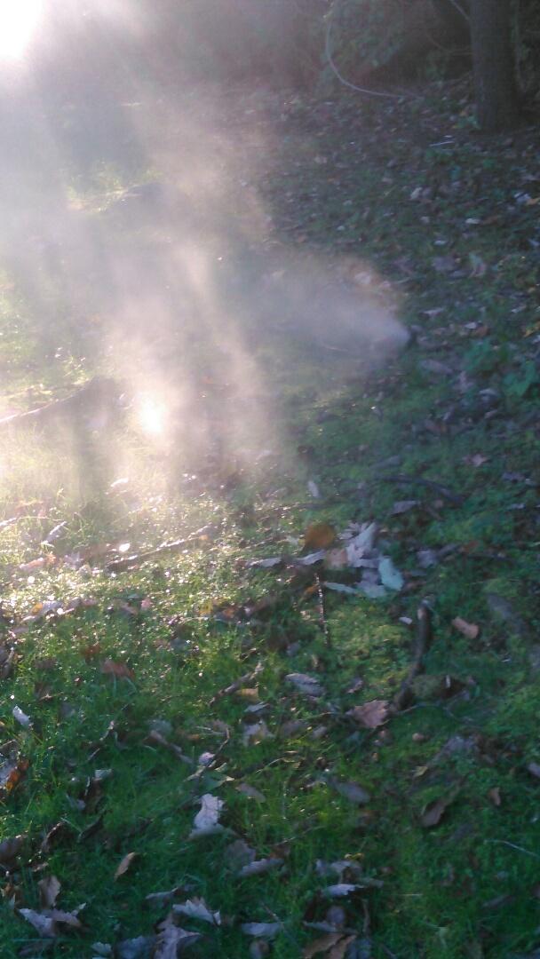 Butler, NJ - Turning off sprinkler system with forced air.