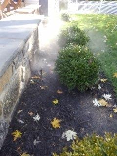 Madison, NJ - Fall Winterization
