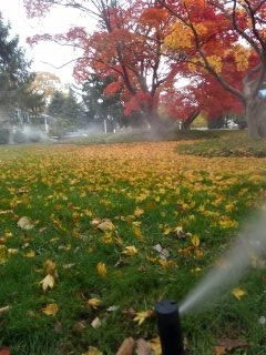 Morristown, NJ - 7 zone sprinkler system being blown out; Morristown Winterizes!!!