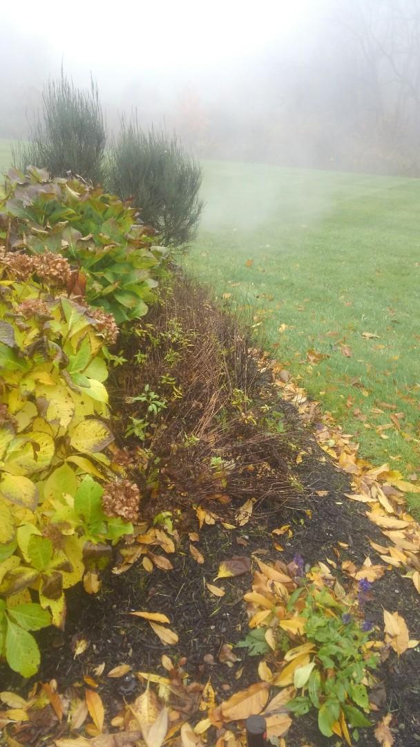 Bernardsville, NJ - Winterize irrigation system