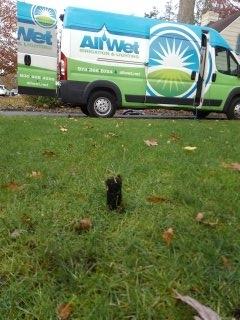 Florham Park, NJ - 6 zone sprinkler system being blown out; Short Hills Winterizes!!!