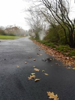 Montville, NJ - 8 zone sprinkler system being blown out; Towaco Winterizes!!!