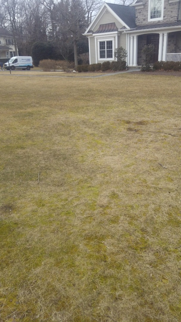 Millburn, NJ - Measure property to apply fertilization for the season