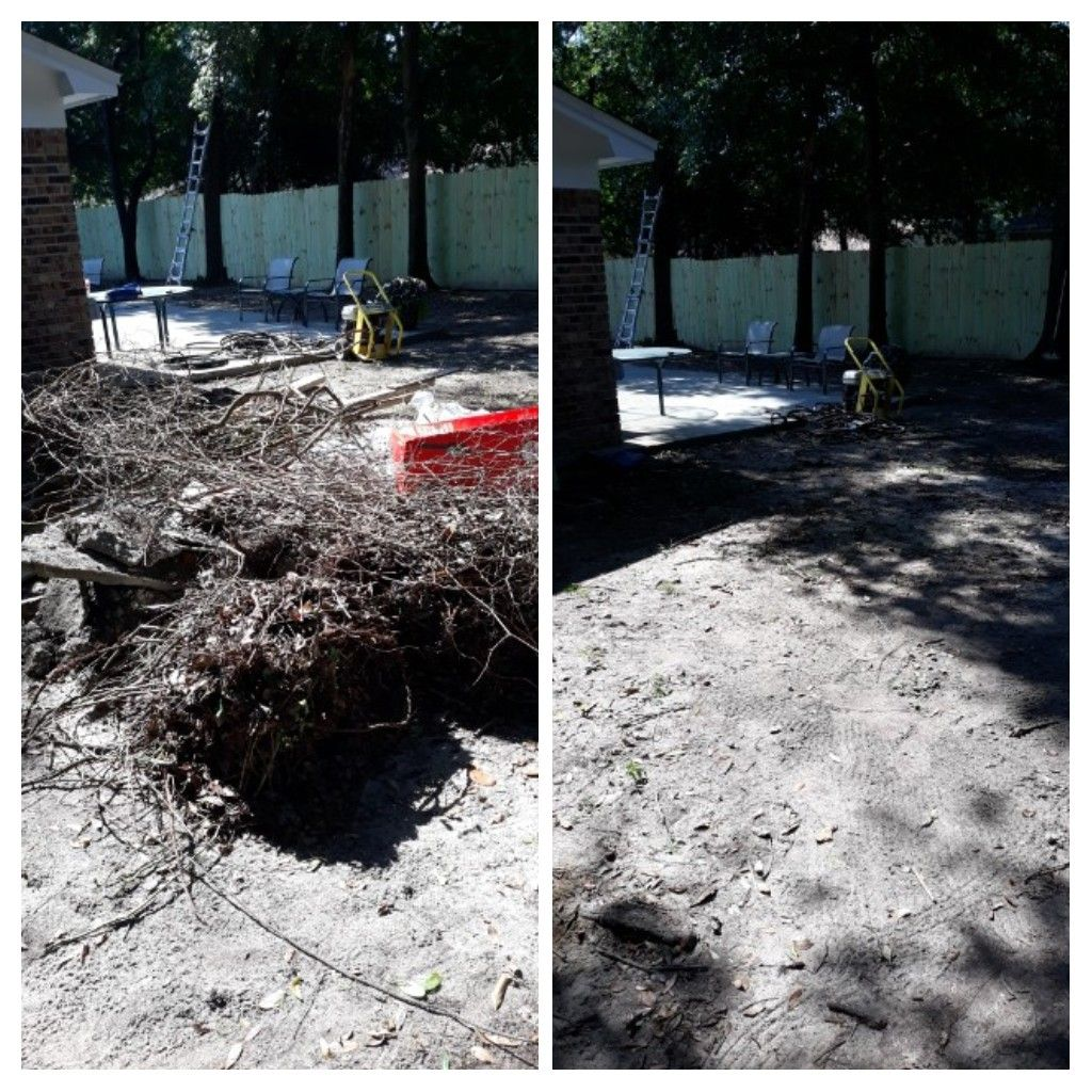 Clean up a customer backyard remove tree debris and trash