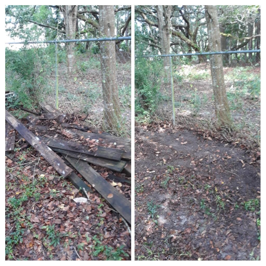 Remove old wood and tree branches and debris customer was happy