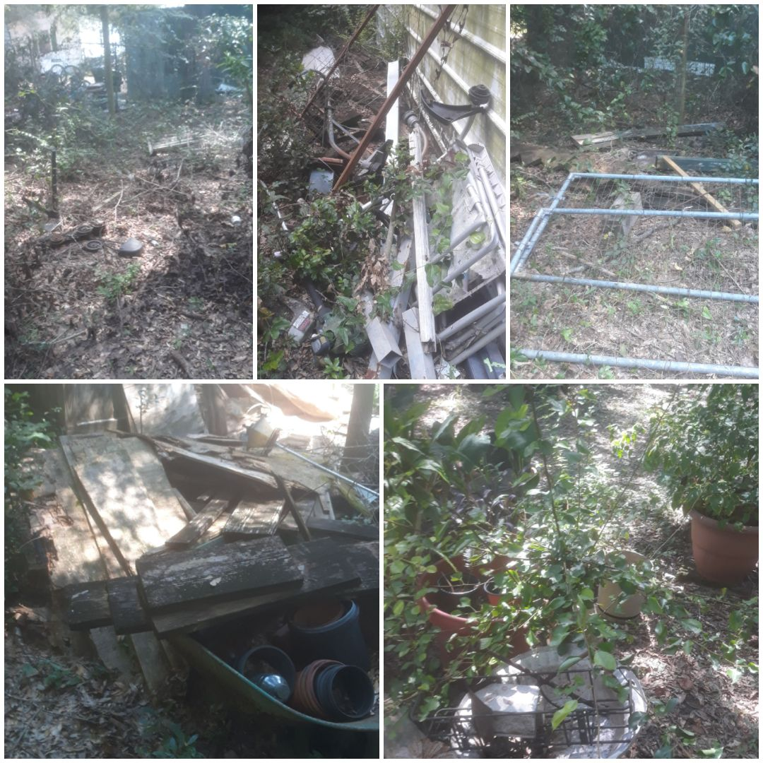 Yard debris clean up.  Removing brush, wood, plants, demo shelves in carport, and other miscellaneous junk and trash