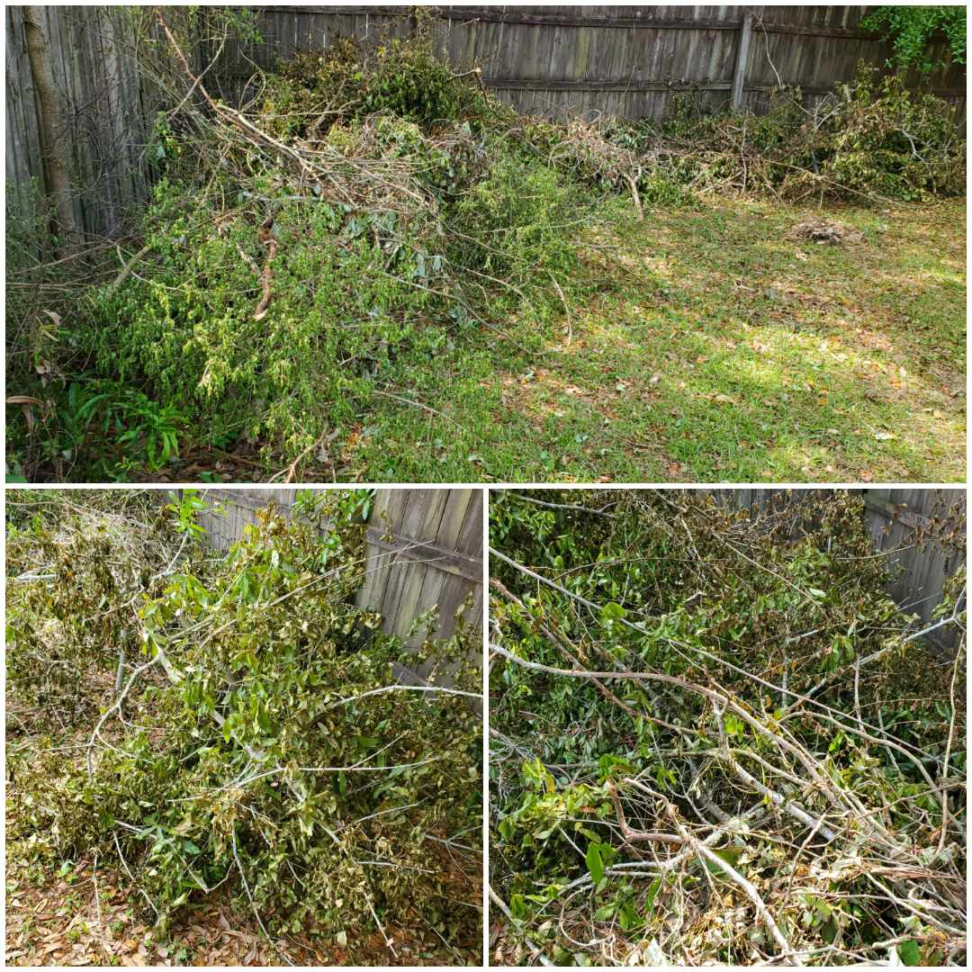 Brush and tree limb removal in Pensacola for one of our property management customers.