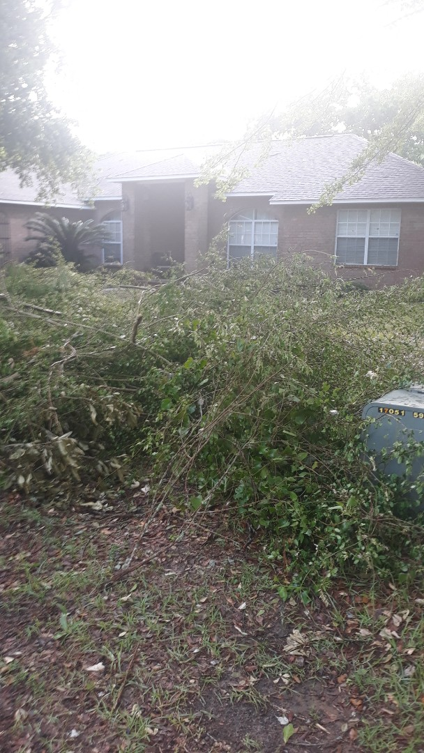 Pickup tree limbs and other debris over here in Pace Fl