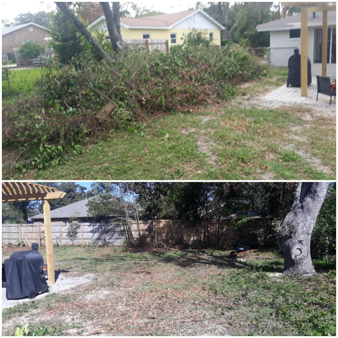 For rid of trees and debris from customer back yard today