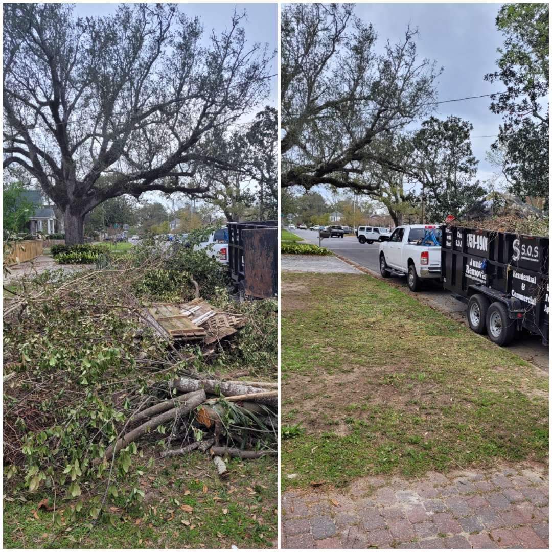 Just finished removing trees limbs and debris from customer front yard.