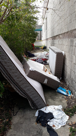 Property Clean Up | Debris Removal