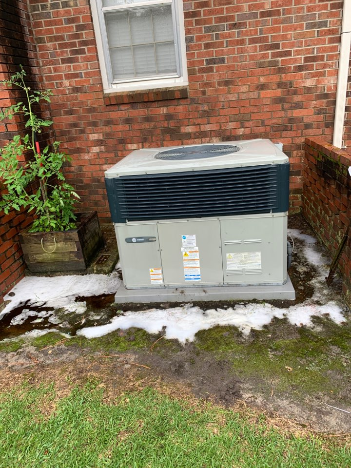Goldsboro, NC - Spring tune up on a Trane package heat pump