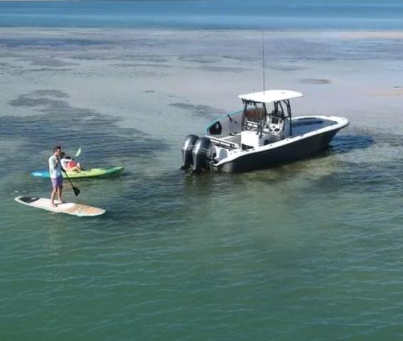 Enhance your day on the water by taking your paddleboards.