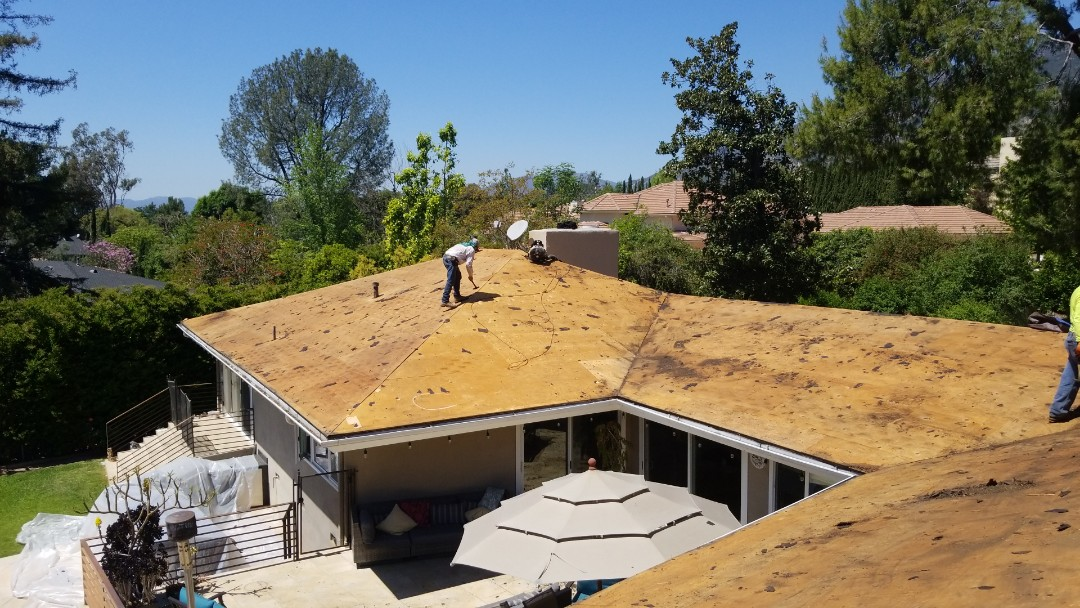 Pasadena, CA - Roof decking after tear off - fixing all wood damage and replacing plywood as needed