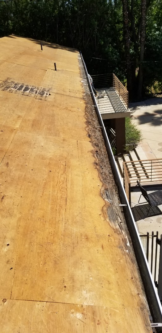 Los Angeles, CA - Water damage need plywood replacement