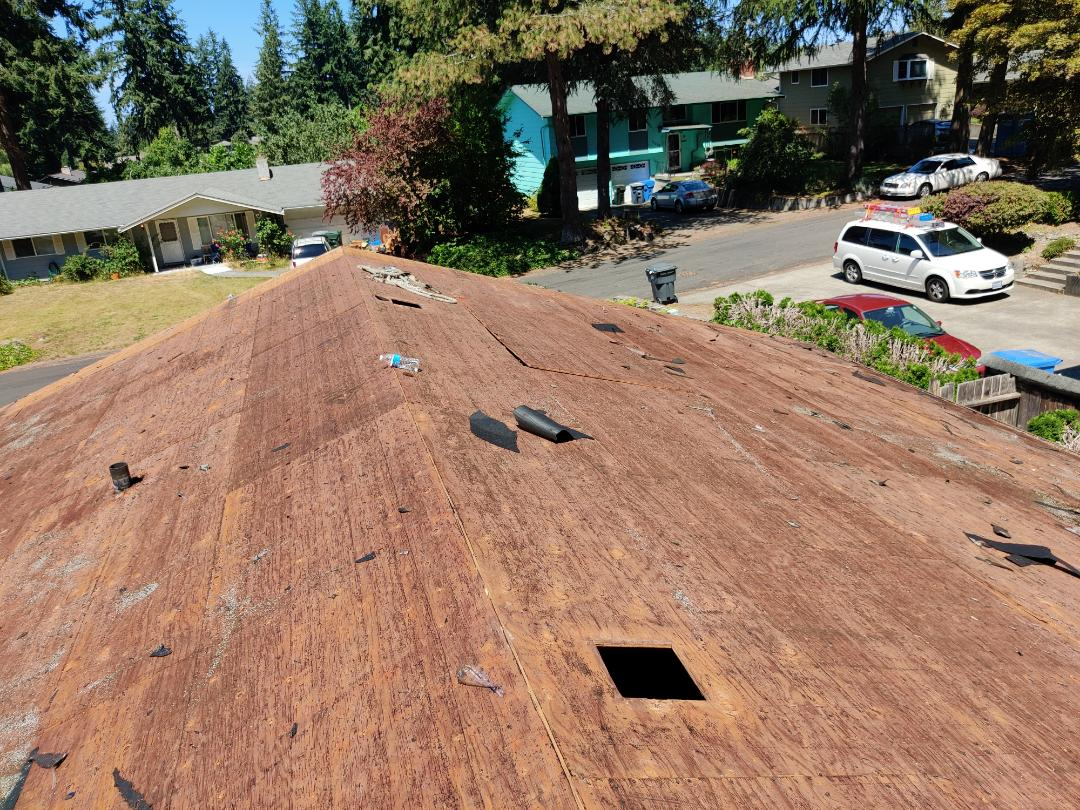 Tacoma, WA - Tearing off a 20 year old roof.