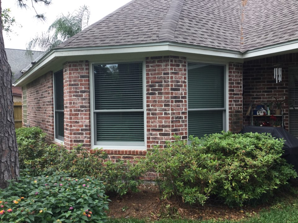 Cypress, TX - New bedroom windows