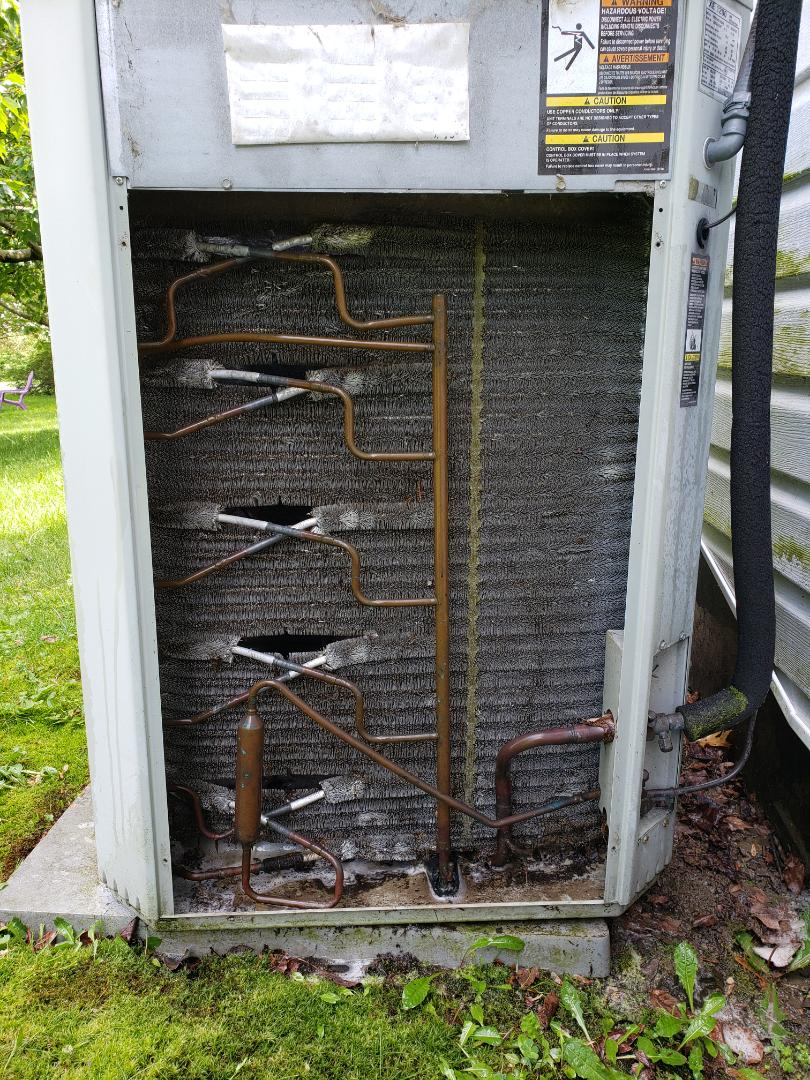 Ithaca, NY - After cleaning Trane out door coil.