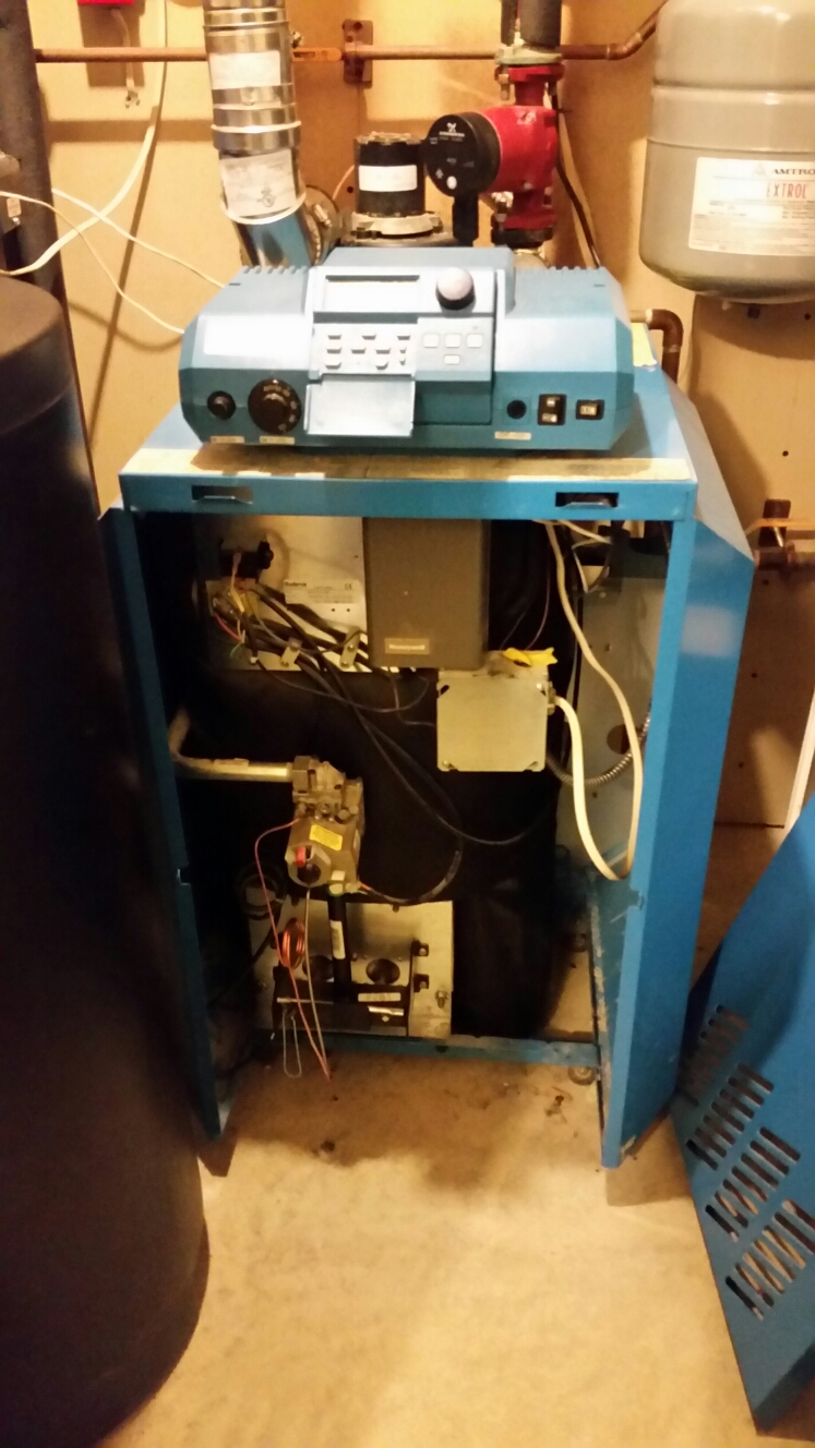Freeville, NY - Planned maintenance on gas fired Buderus boiler with Alpha circulator pump. Test safeties and combustion.
