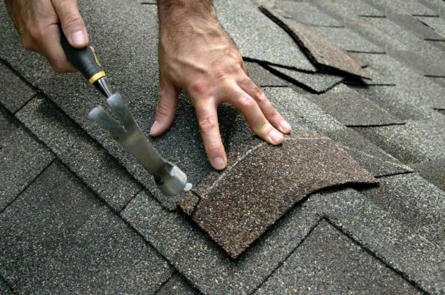 Roofing Repairs Niceville FL : Failure to maintain your roof properly can have devastating consequences.  Check This Out: https://freemanroofing.com/roof-repair/