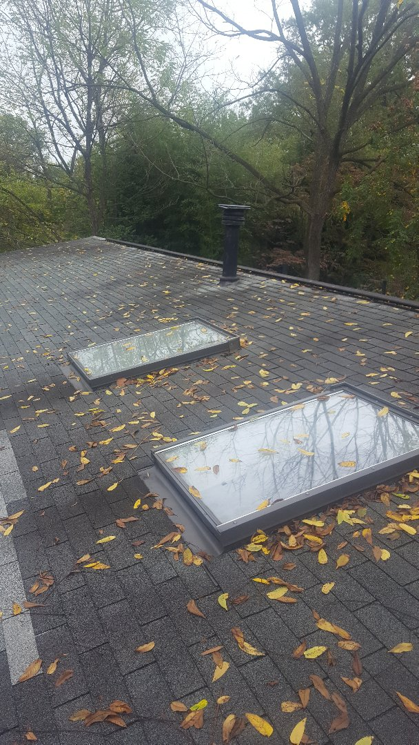 Garrett Park, MD - Estimate to replace old / leaking skylights.