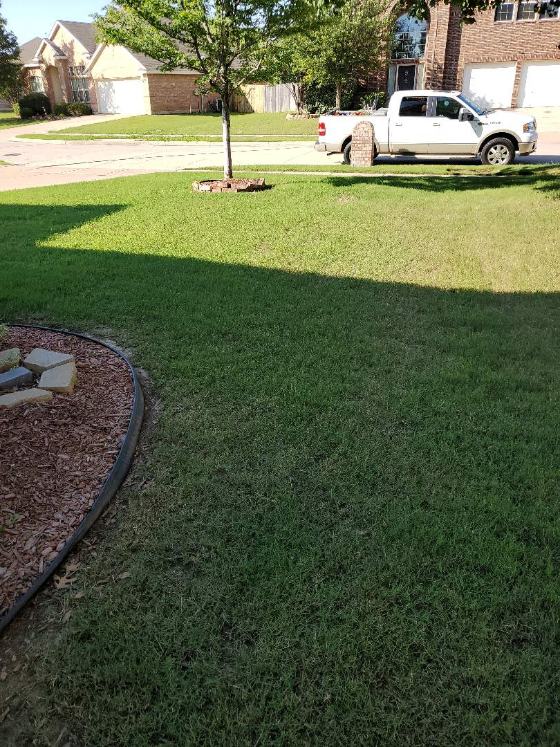 Fort Worth, TX - Sprinkler system repairs,  Main line leaks.