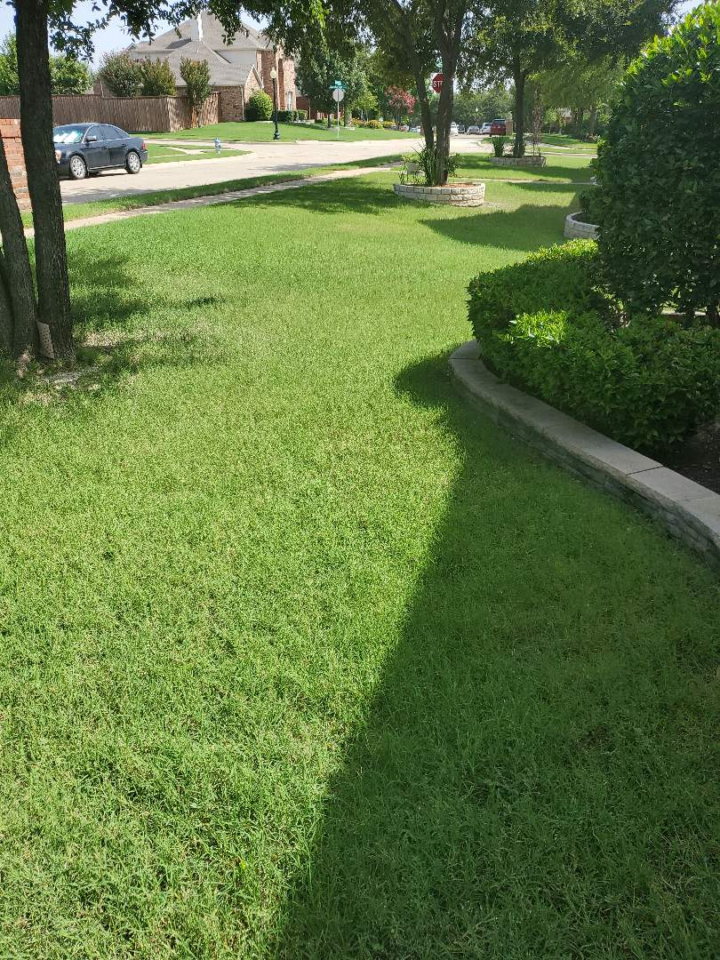 Dallas, TX - Sprinkler system repairs,  Replace broken heads and fix zones not working.