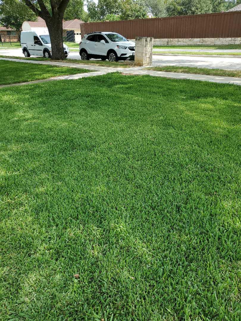 Carrollton, TX - Sprinkler system repairs