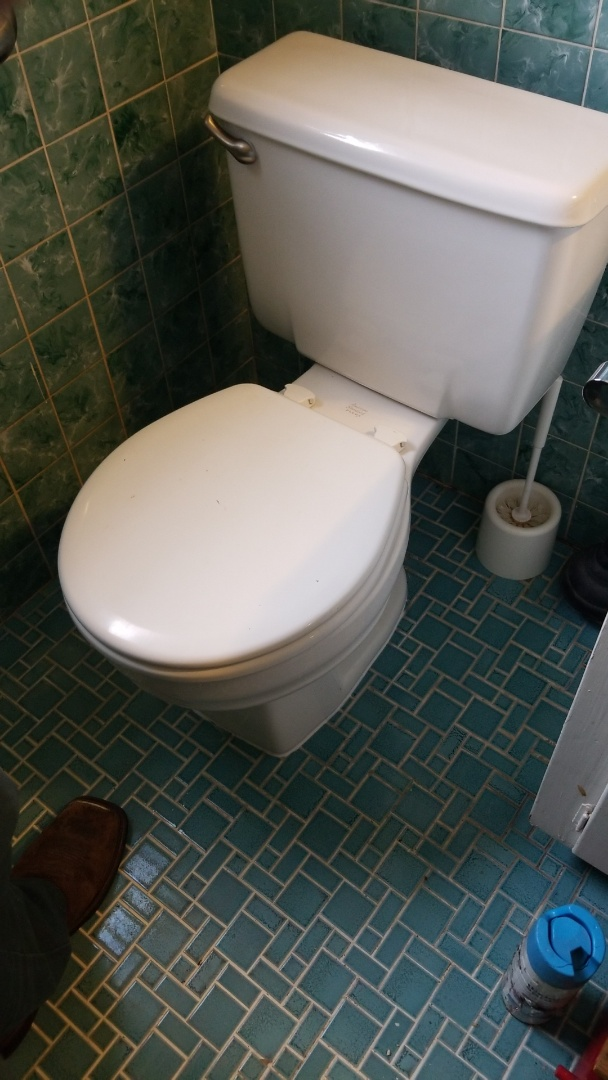 Houston, TX - Leaking toilet, wax ring replace,